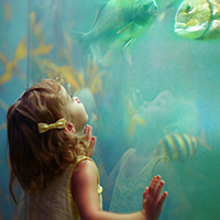 kid at the aquarium